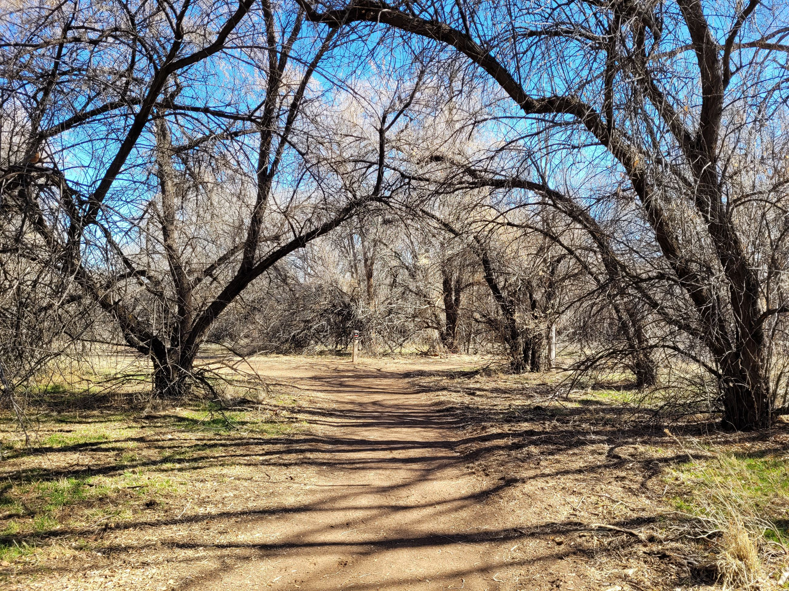 Kindred Reserve Open Space (26)